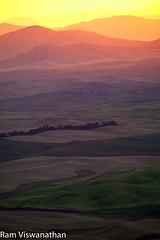 Sunrise over Steptoe Butte (ramviswanathan) Tags: landscape photos wheatfields palouse steptoe