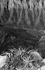 Valley View (rasdiggity) Tags: trees blackandwhite mountain mountains rock mexico ridge leon valley northamerica nuevo huasteca lahuasteca sierramadreoriental nuevoleón