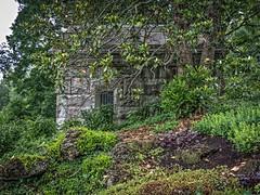 2015-08-04_MausoleumDaily216-365 (vickievilla) Tags: cemeteries cemetery cincinnati fences arboretum mausoleum springgrovecemetery