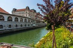 IMG_9772 (ludo.depotter) Tags: ljubljana ljubljanica slovenië
