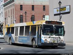 Metro Transit #1073 (vb5215's Transportation Gallery) Tags: metro transit halifax 2005 new flyer d40lf