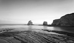 Les jumeaux (Explorer) (begonafmd) Tags: bnw bn agua mar rocas acantilados oceano ocean hendaya franica paysbasque