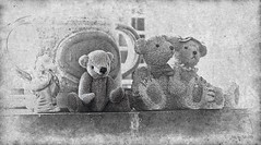 Waiting for Honey (Billy-Fish) Tags: bear blackandwhite texture monochrome blackwhite waiting teddy sweet textures honey textured billyfish