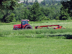 cuttin' hay (2) (Ange 29) Tags: trees tractor canada king olympus cutting hay township e30 zd 35100mm