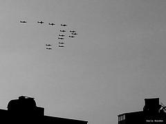 #30June 2013 Rebel    #egypt (Sierragoddess) Tags: city flag military jets egypt trails cairo revolution egyptian planes rebellion contrails skywriting tahrir frommybalcony 2013
