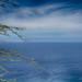 one perfect sea (nosha) Tags: ocean sea beautiful beauty island hawaii oahu tropical hawaii2013