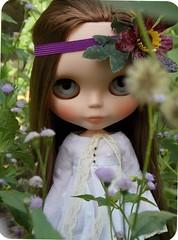 A beleza ideal está na simplicidade calma e serena. (Johann Goethe)