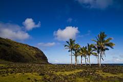 IMG_6723 (Guilherme Goes) Tags: chile canon 7d moai easterisland isladepascua tamron1750 ilhadepascoa