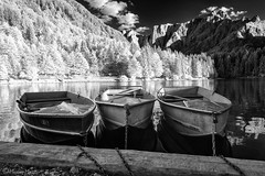 Barche (Massimo M0R3TT1) Tags: trees lake mountains reflection water alberi montagne ir boat barca infrared acqua riflessi 1740mm fusine laghi 40dir