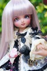 DSC01139 (zeky_afa) Tags: doll bjd roko ciaobella bambicrony