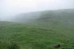 IMG_4562 (WN Knipser) Tags: schweiz nebel first grindelwald regen wanderung bachalpsee canonpowershots100 hochalpsee