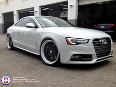 Audi S5 on HRE C93 (wheels_boutique) Tags: audi s5 hre c93 statis hrewheels wheelsboutique stasiscoilovers wheelsboutiquecom stasisbrakes