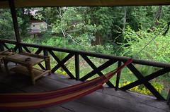 Hammock Jungle Lodge