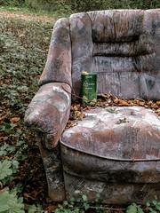 Green Tea (Munich DX) Tags: green abandoned forest lost tea outdoor couch sofa wald bltter iphone vergessen herbstlich