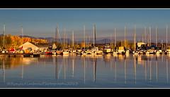 Fall at Chatfield Marina (RondaKimbrow) Tags: morning travel reflection fall marina sunrise scenic destination boathouse chatfieldstatepark autumnlake noats chatfieldmarina rondakimbrowphotography