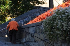 Matching colors (stenaake) Tags: street city flowers autumn people orange woman fall church colors stone lady town sweden stockholm steps stick matching scandinavia östermalm engelbrektskyrka