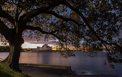 Sydney opera house (Chaiwat lee www.facebook.com/Mondayfoto) Tags: ocean city bridge sunset sea sky urban house building tower skyline architecture modern night skyscraper landscape bay harbor opera cityscape harbour dusk famous sydney australian australia landmark nsw sail unusual