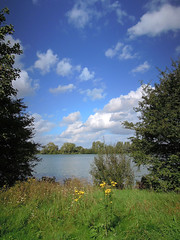 Villeneuve d'Ascq, lac du Hron (Ytierny) Tags: france nature vertical lac ciel nuage arbre nord herbe branche gazon flandre villeneuvedascq espacevert plandeau parcurbain basenautique lacduhron mtropolelilloise ytierny
