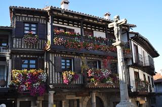 Flores en La Alberca.
