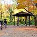 Fujigaoka Park of Late Autumn / 藤が丘公園