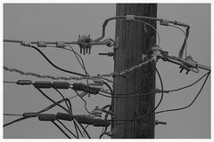 Power Pole (T.J.Gilmere (670,000 views Thanks!)) Tags: old city lines colorado pole coloradosprings poles powerpole