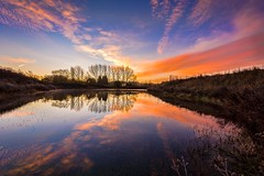 A reflective moment (James Waghorn) Tags: winter light england sky lake tree water clouds sunrise reflections countryside kent nikon quiet peace sigma tranquility calm contrails ultrawide maidstone lightroom sigma1020 d7100 blinkagain bestofblinkwinners blinksuperstars bestofsuperstars blink4gallery