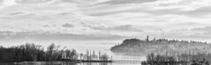 noir lake constance ... (David Kracht) Tags: park wood trees winter light sunset shadow sky blackandwhite bw cloud sun lake snow david alps cold detail reflection tree ice nature water fog gardens dave backlight c