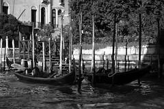 Fotografare Venezia (Francesco Pennino) Tags: bw nikon ngc nikond50 venezia soe nikond3200 nikonclubit vpu1 vigilantphotographersunite vpu2 vpu3 vpu4 vpu5 vpu6 vpu7 vpu8 vpu9 vpu10 fotografarevenezia