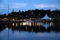 Chiang Mai Night Safari (Yukkuriko) Tags: thailand zoo chiangmai processed  nightsafari bearbeitet chiangmainightsafari