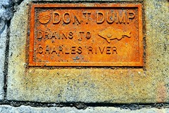 0225 dont-dump (Fred Igo) Tags: street cambridge color ma rust massachusetts charlesriver photoaday cambridgema