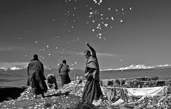 China - Tibet (luca marella) Tags: travel people blackandwhite bw white mountain black film analog blackwhite pray documentary pb bn bianco nero biancoenero