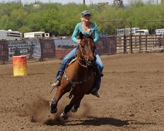 Wickenburg Barrel Race (Garagewerks) Tags: arizona horse woman sport female race cowboy all bigma sony country barrel sigma arena rodeo cowgirl athlete wickenburg 50500mm views50 views100 views200 views150 f4563 slta77v