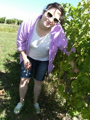 "Levin Family Helper - Kimberley Maturation Testing • <a style=""font-size:0.8em;"" href=""http://www.flickr.com/photos/133405556@N08/19890885898/"" target=""_blank"">View on Flickr</a>"
