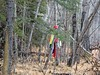 Spirit in Alberta (kevinmklerks) Tags: alberta rocky mountains kootenay kootney plains lake abraham falls forest floodplain siffleur