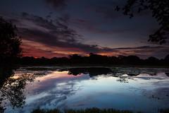 Estrada Parque - Pantanal da Nhecolândia (Marcos Paiva) Tags: pantanal paisagem aoarlivre água lagoa landscapes corumbá nhecolândia pôrdosol entardecer ngc