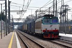 E652 015 Tigre (luciano.deruvo) Tags: tigre e652015 trenitalia fs rfi trenomerci container