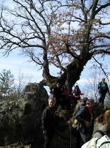 Senderismo Quintanar De La Sierra Y Regumiel Burgos - Fotografía Javi Cille (11)