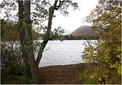 Looking across the Lake (Audrey A Jackson) Tags: canon60d lakedistrict cumbria nature lake water trees shoreline autumn vacation hills leaves