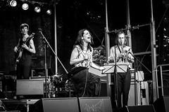 Hajnal & Band