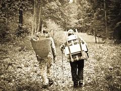 Come un tempo (Cristina Birri) Tags: padre bosco poas figlio camminata gerla fornidisopra