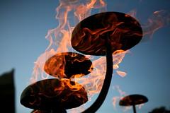 Flaming Lotus Girls Xylophage (smashz) Tags: sanmateo makerfaire