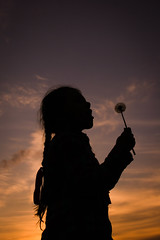 Blow. (Krista Baltroka) Tags: sunset summer flower girl spring blow dandelion simple braid