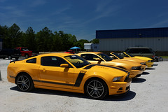 Yellow Mustangs at the Atlanta Motorsports Park (John Chulick) Tags: park county boss school atlanta bus yellow georgia track blaze mustang screaming dawson motorsports registry