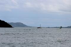 IMG_1834 (cheryl's pix) Tags: hawaii oahu kaneohe kualoaregionalpark kneohe kaneohehi kneohehi