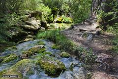 Nacimiento del Ro Cuervo (Cuenca) (EstelaSanchezR) Tags: del ro nacimiento cuenca cuervo aprobado