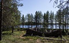 Hossa (Juho Holmi) Tags: summer macro green nature k suomi finland dc scenery finnland pentax hiking 5 north sigma 45 area 17 28 af eastern 70 k5 finlandia autiotupa ostrobothnia kainuu suomussalmi hossa 1770mm f2845 metshallitus visitfinland retkeilyalue