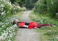 23-7-2013 (Copperhobnob) Tags: explore dressingup ladybird railwayline hfdt nearlyrunoverbyanoldmannieonabike