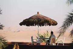 Algrie , le tourisme du dsert -  ,   (menosultra) Tags: africa sun tourism algeria google desert image south north images oil algerie alg algerian dsert alger    timimoun algerians    algrien   lalgrie