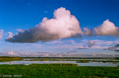 River Shannon (albisserl) Tags: ireland cloud river clare irland shannon irl countyclare
