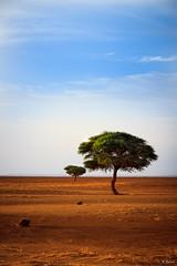 7136 (EYESARI) Tags: desert 4x4 maroc atlas